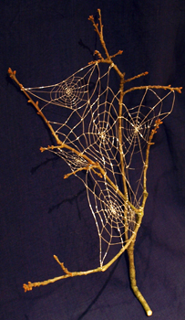 Webs on a branch